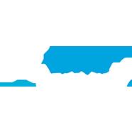 Логотип Wild Tornado